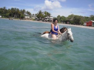 Swimming with the horses in Saint Lucia